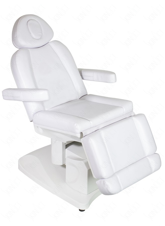 Bellage Electric Facial and Massage Treatment Table Bed – Treatment Chair