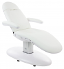 Venus Electric Medical Spa Treatment Table/Chair