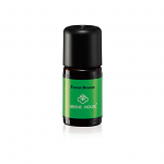 Serene House Essential Oil Forest Breeze