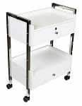 Salon Spa Cart With Two Drawers